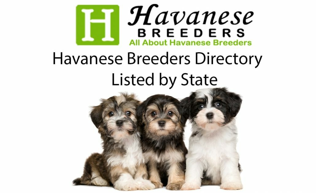 havanese breeders directory - listed by state